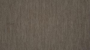 almond 1 300x169 - Pennines from Nettex Australia